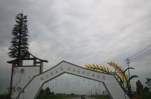岷江两岸春潮湧,农业现代换世纪。                       岷江现代农业公园位于东