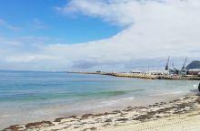 珀斯之旅第十一日A~罗特尼斯岛。 岛上风光奇美无比,各种鸟儿翻飞、栖息,鸟鸣啼叫声不绝于耳。据说这里
