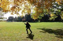 【总督府花园】 到达加拿大首都渥太华,我们前往总督府参观,因为总督今天正在办公,不能参观,但是总督府
