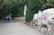 万佛洞位于济南历下区千佛山风景名胜区北边,因洞内南北两侧雕有整齐排列的一万五千尊小佛而得名。入内可一