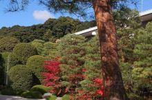 足立美术馆位于岛根县的安来市,创办于1970年,连续十一年蝉联日本庭园第一。