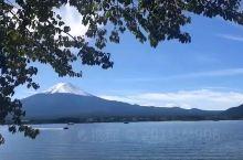 富士山下,河口湖