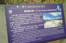 镜泊湖跳水可以说是镜泊湖瀑布的一大特色,很多朋友来到镜泊湖等待很久,都是为了看到这一特色。跳水活动是