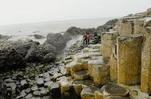 多少年了,一直能让人念念不忘那大气滂沱的自然景观,从英国到北爱尔兰,见到一种近乎梦幻般的羊群、富饶的