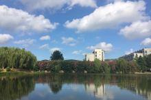 江南大学,校园内小蠡湖,荷叶田田,红花点缀,与游来游去的黑天鹅相映成趣。