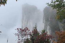 吃过午餐准备爬恩施之巅-黄鹤峰林峡谷。刚刚在庆幸雨停,一会儿满天飞雾袭来,能见度极低。攀爬之路一直在