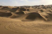 中国距离城市最近的、目前最干净的、面积比较大的沙漠。直线距离步行可能800米,然后绕一圈景交车费30