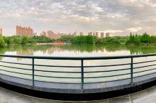 """常州青枫是个集""""生态、科普、活力""""三大主题于一身的城市森林公园,也是龙城目前面积最大的免费的敞开式公"""