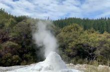 间歇喷泉 泉眼里喷出的水柱高高低低,擎天水柱倾泻而出,蔚为壮观