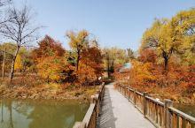 滴水壶位于北京北部的延庆和怀柔两区的交界处,这里地处燕山山脉,有一条长达百里的山沟,这里风景如画,所