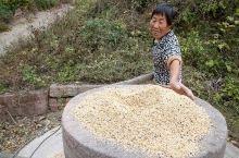 推磨   山村里的一道风景线          河南靠近陕西的渑池县有个赵坡头村,过去这里交通闭塞,