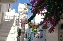 夏季的米克诺斯,到处盛开着艳丽的三角梅,与白色的墙,与蓝色的围栏,组合成别样的美景。小巷、小店、小小