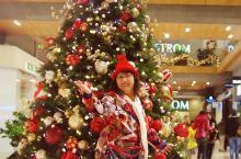 美国西雅图贝尔维尤:我的圣诞我快乐度过。贝尔维尤早在圣诞节前一个月就开始各种准备各种布置了,大街小巷