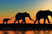 坦桑尼亚小众目的地推荐:萨达尼国家公园   位于巴加莫约,潘加尼和桑给巴尔三角区的的中心,萨达尼国家