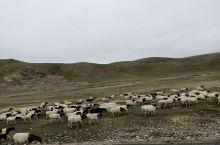 那条路一般每年的只有七八月份才开,这个季节你要是从和静到乌鲁木齐的话,还是从库尔勒那面走甘沟,过吐鲁