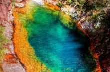 浙江花岩国家森林公园位于瑞安市西部,飞云江北侧,是瑞安市寨寮溪风景名胜区的重要组成部分,处在温州至百