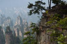 张家界因旅游建市,是中国最重要的旅游城市之一。 2010年1月25日,张家界南天一柱被更名为《阿凡达
