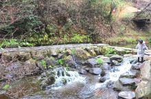 白川水源,号称日本水源最清洁的地方