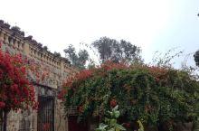 Argotti Gardens Floriana