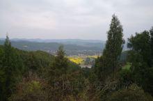 乡间小路旁的美景