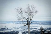 富良野滑雪场 从北海道坐大巴过来,大概三个小时左右的车程 比较方便,而且中间不用换乘 jr过来也是一