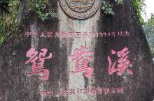 屏南县鸳鸯溪 宜洋小院餐厅   双溪猕猴自然保护区