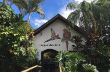 伊瓜苏的热带鸟园内有多座达8公尺高的巨型鸟笼,让大嘴鸟、鹦鹉、黄莺和很多其它巴西品种的鸟类栖息,园内