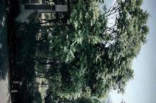院子阳光 羌城美食 登山徒步 小酒温泉