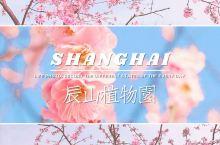 超美魔都网红打卡地| 辰山植物园  辰山植物园 位于上海市松江区,占地面积207.63万平方米,一年
