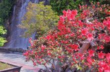 这几日,古城古镇,竹海探悠,花海徜徉,上天入地,好不快哉!!!今天,我们走进,中国最美六大旅游洞穴的