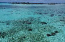 世上其中一个最美的海洋。人生必到一次。这里的海鲜特别新鲜又便宜。潜水天堂,物廉价美。来到这里也可以好
