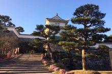 福岛·福岛县 二本松霞ヶ城、菊花人偶很好、每年10月末到11月20日左右 福岛·福岛县