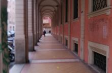 博罗尼亚大学