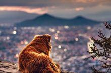 智利旅行——梦不落之城,圣地亚哥的生活就是如此梦幻,有落寞、有狂欢、有平静如水、有繁华落尽、有车水马
