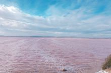 #西班牙[地点]##西班牙[地点]#粉色盐湖—托雷维耶哈盐湖  西班牙托雷维耶哈盐湖,1989年被列