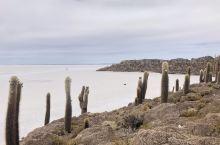 乌尤尼大盐湖位于玻利维亚和智利边境、在海拔3500米安第斯高原上、我们六人从拉巴斯飞到乌尤尼在当地组