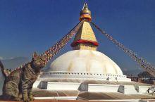 好像再去一次尼泊尔呀!!!