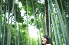 京都  岚山 地区游览攻略 来岚山最方便的就是坐岚电了。我们是骑车到北野白梅町站买的票坐的车。建议购