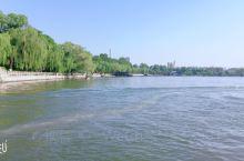 大明湖畔的夏雨荷