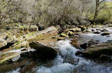 六盘山国家森林公园,小南川景区