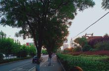又是一年初夏季节,渑池大街小巷处处都是赏心悦目的美丽景象。这些绿树成荫的地方还有宽阔的马路,平坦舒适