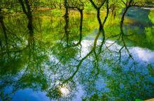 诸暨第一站打卡五泄风景区,五泄风景区最有名气的就是五泄瀑布了。它以秀丽奇巧取胜,闻名于世。整个瀑布