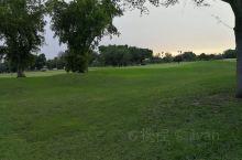 这是一个很靠近机场的高尔夫球场,球场很大,围绕一圈至少半小时,草坪修剪很好,时常都有人在维护,草坪上