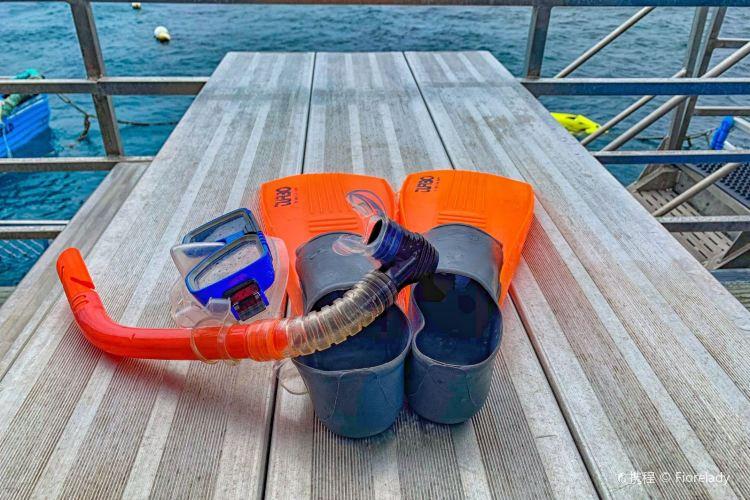 摩爾外堡礁4