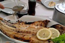 纯野生的烤鱼,味道杠杠的。没有任何东西,只是在上面弄点盐巴。