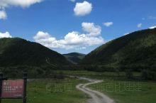位于迪庆藏族自治洲的普达措公园,以碧塔海、属都湖和弥里塘亚高山牧场为主要组成部分,海拔在3500米至