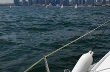 青岛奥帆中心——帆船出海! 看到好多海蜇! 船长说,运气好的话,会看到飞鱼 挺不错的体验! 包船,注