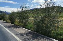 大美焉支山 从山丹县城往焉支山走,路上美不胜收,旅行果然可以一扫生活的阴霾,何况还是看到这么多美景的