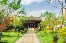 这里视野开阔 多元文化共存 传统文化保护的很好 是四月来韩城的 一派春意盎然的景象 加之韩城本就是很