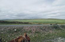 山丹军马场一场,骑马50一小时,领队另付100,但是现在草原不能上了,只能在草原边边上跟路上骑骑,但